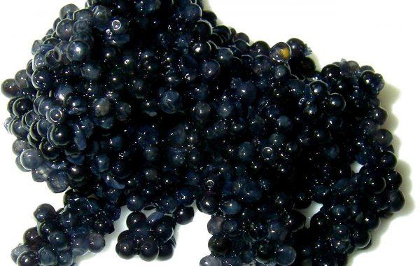 Caviar-Power Deluxe Anti-Aging